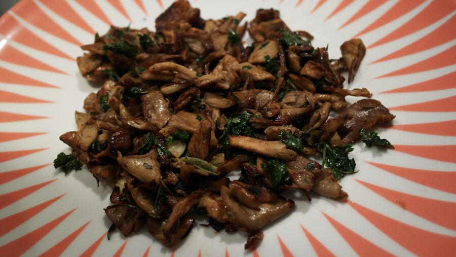 la-coutch-blog-pret-a-pousser-kit-champignons-pleurotes-gris-12