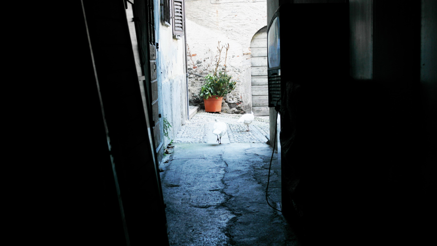 la-coutch-blog-voyage-lombardie-lacs-italiens-stresa-isola-bella2