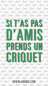 la-coutch-blog-jiminis-manger_des-insectes-a-lapero3
