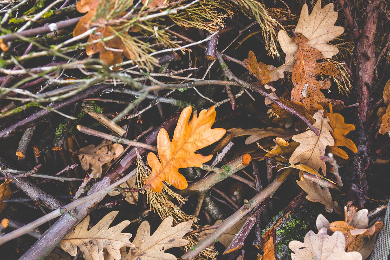 la-coutch-blog-voici-l-automne.6