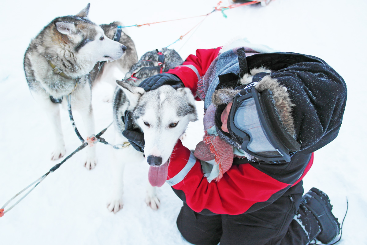 la-coutch-blog-lifestyle-voyage-finlande-laponie-ride-huskies12