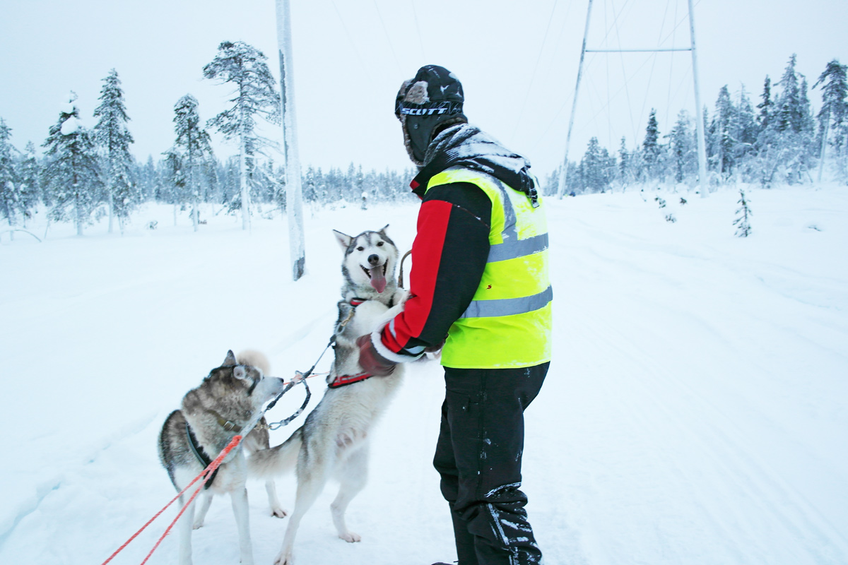 la-coutch-blog-lifestyle-voyage-finlande-laponie-ride-huskies13