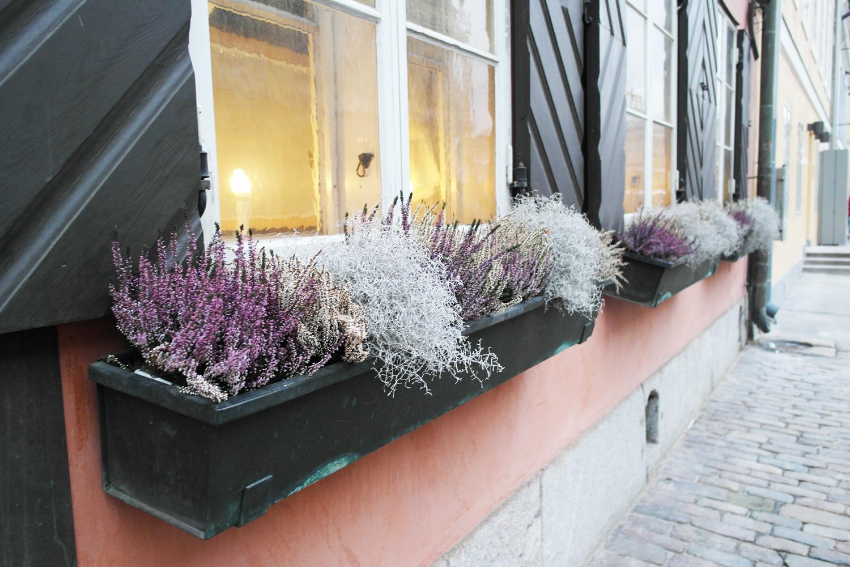 la-coutch-blog-une-journee-a-he3lsinki-finlande-visite4