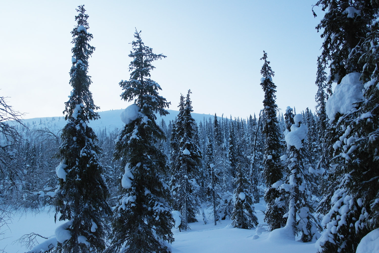 la-coutch-blog-voyage-laponie-finlande-trek-raquettes1