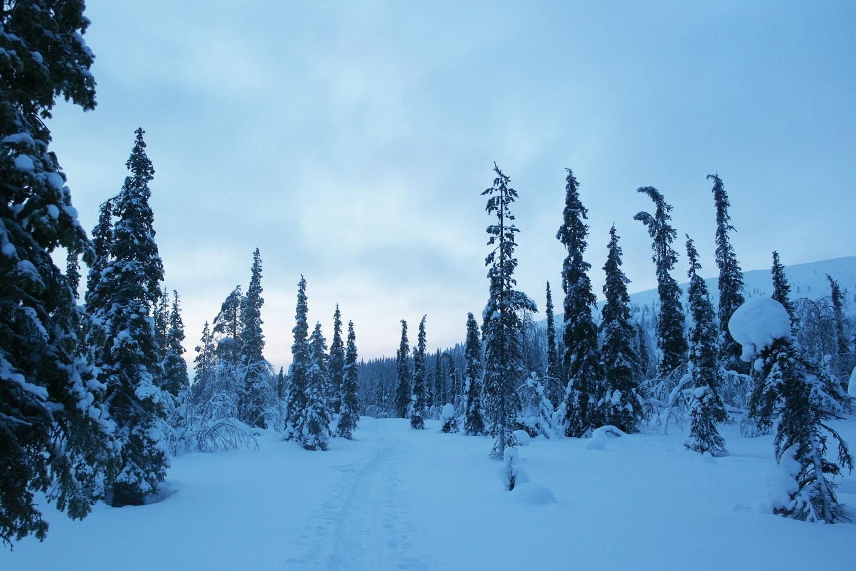 la-coutch-blog-voyage-laponie-finlande-trek-raquettes18
