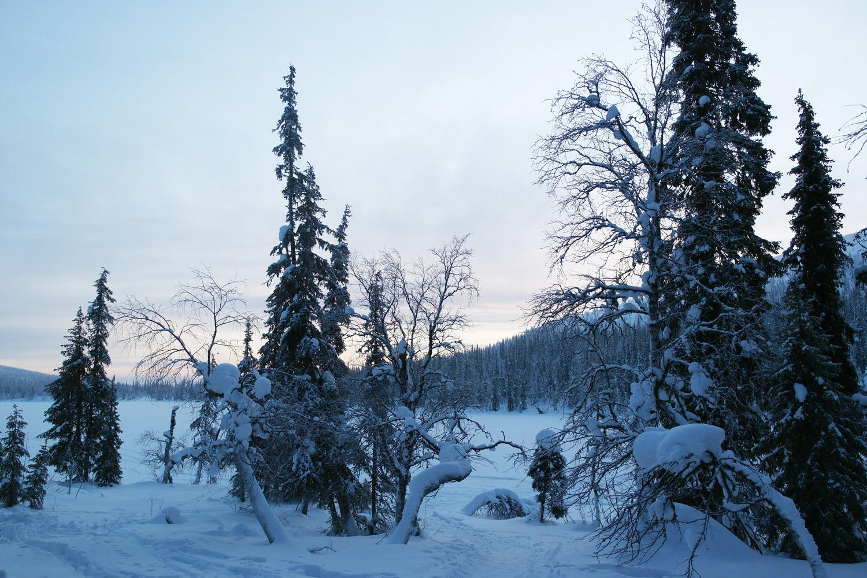 la-coutch-blog-voyage-laponie-finlande-trek-raquettes2