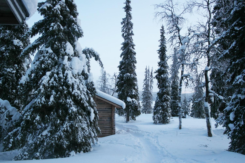la-coutch-blog-voyage-laponie-finlande-trek-raquettes4