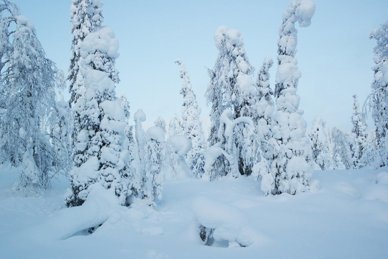 la-coutch-blog-voyage-laponie-finlande-trek-raquettes7