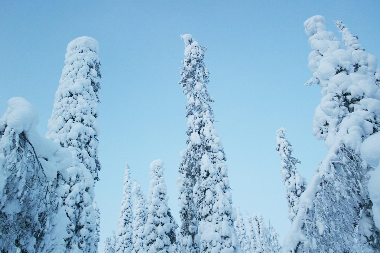 la-coutch-blog-voyage-laponie-finlande-trek-raquettes9