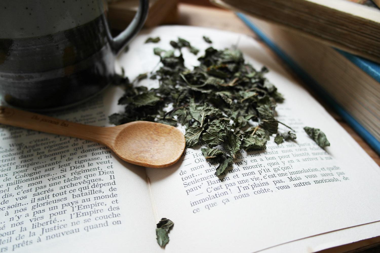 la-coutch-blog-lifestyle-chic-des-plantes-une-tisane-au-lit2