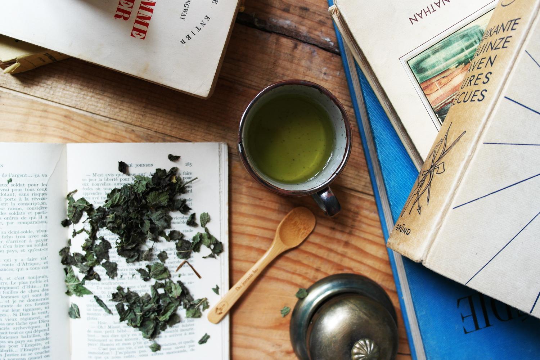 la-coutch-blog-lifestyle-chic-des-plantes-une-tisane-au-lit7