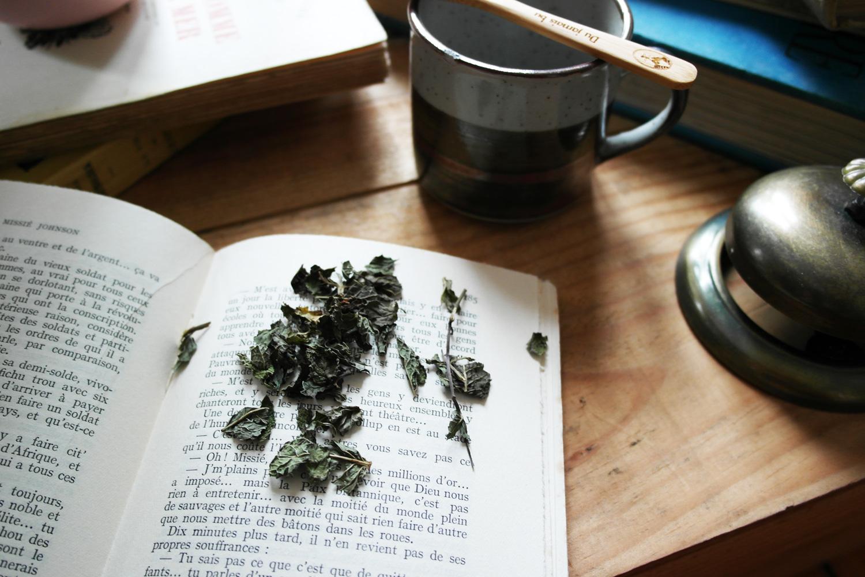 la-coutch-blog-lifestyle-chic-des-plantes-une-tisane-au-lit8