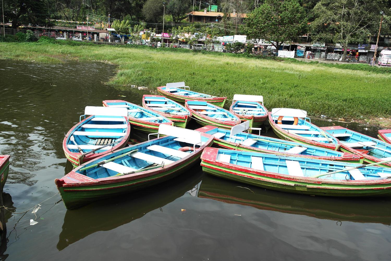 la-coutch-blog-lifestyle-voyage-decouverte-du-tamil-nadu-kodaikanal-montagnes-indienne13