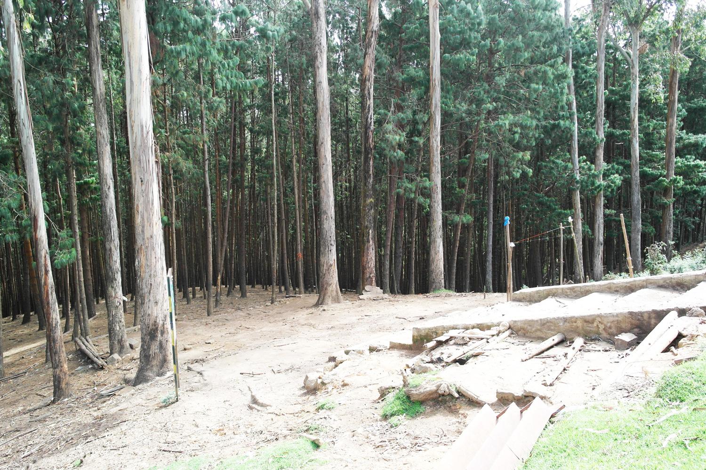 la-coutch-blog-lifestyle-voyage-decouverte-du-tamil-nadu-kodaikanal-montagnes-indienne6
