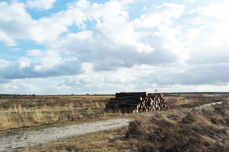 la-coutch-blog-voyage-48h-dans-une-yourte-mongole-en-hollande-pays-bas4